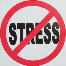 No Stress1