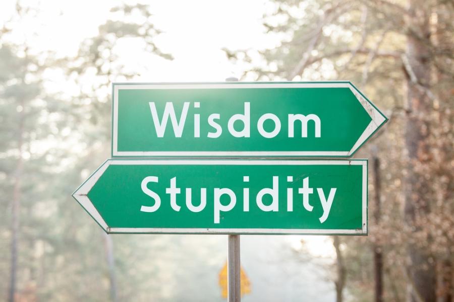 Wisdom/Stupidity